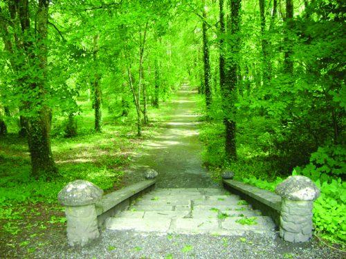 W B Yeats Landscape