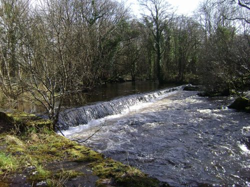 Mill race for Imbolc walk