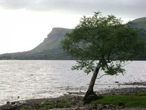 Earthwise tour of Ben Bulben area Ireland