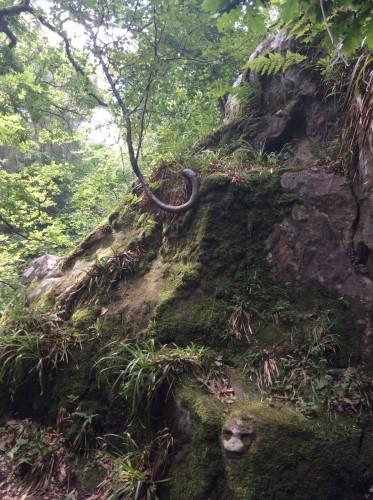 Earthwise tour of Rosln Glen
