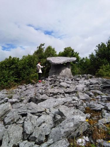 dolmen on our Following Gaia trail South Galway