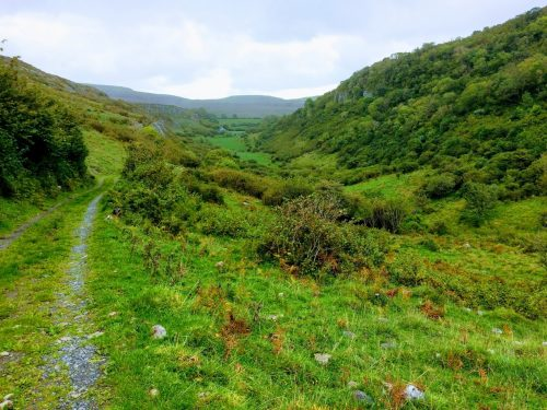 Celtic season of the aspen walk