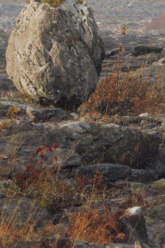 Gaia Touch stone