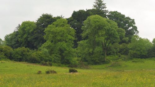 goddess site on mound