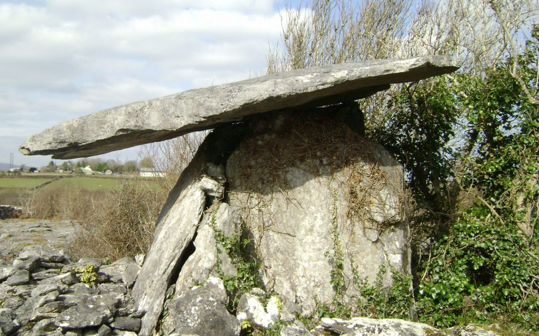 Tour Ancient Irish Past