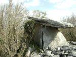 hidden dolmen near Gort and Kinvara in the Burren