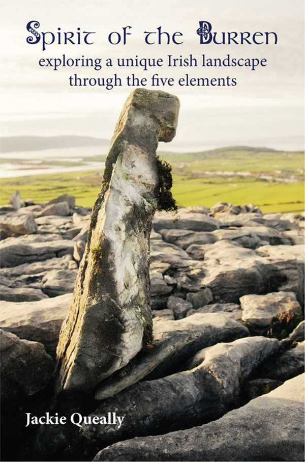 deep book on a sacred landscape Ireland