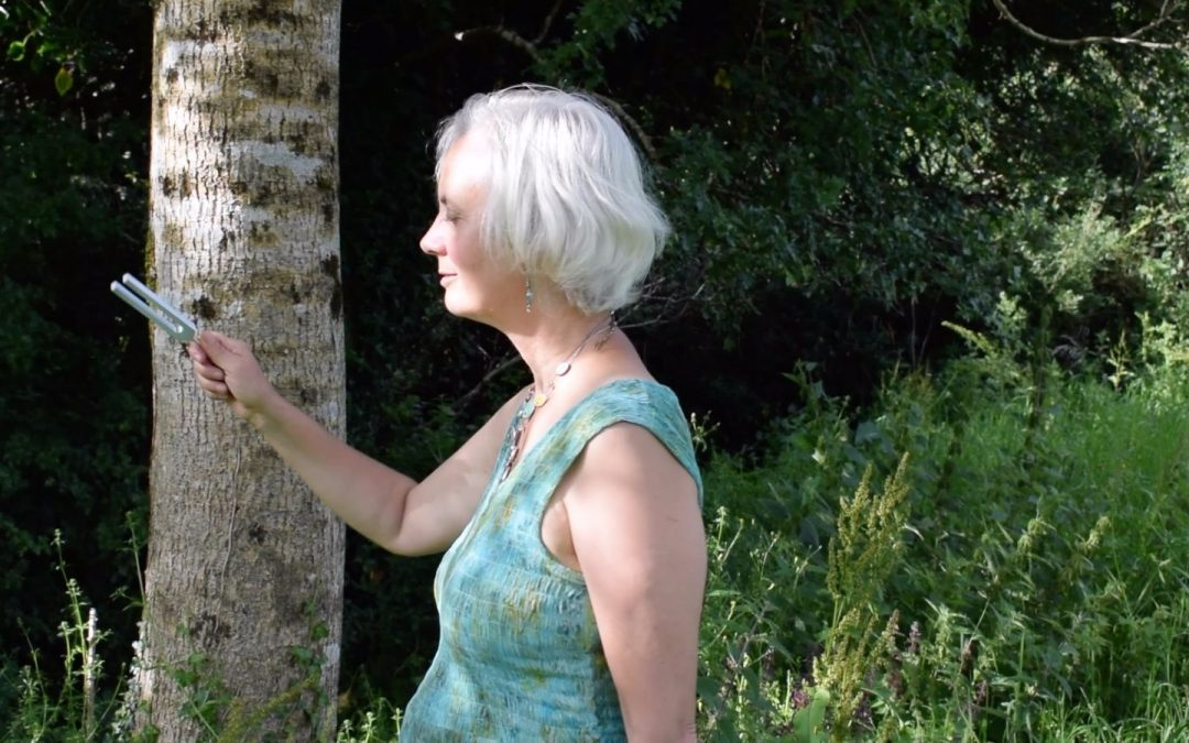 Healing Trees with Sound