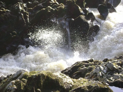 River Finn at Salmon Leap