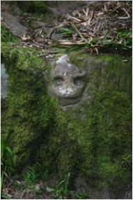 Carving of head in Roslin Glen